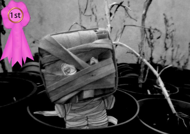 mummy_in_the_garden-Kareen_Herbert